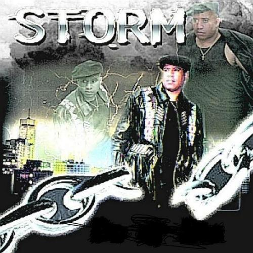 Holy Ghost Storm The Journal Of Gospel Music